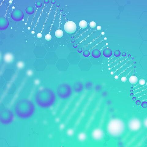Конкурс НФДУ «Наука для безпеки людини та суспільства» оголошено!